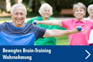 bewegtes-brain-training-wahrnehmung